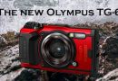 Olympus TG-6 for snorkeling