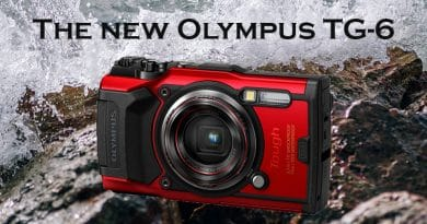 Olympus TG-6 for snorkeling – New features for underwater photography