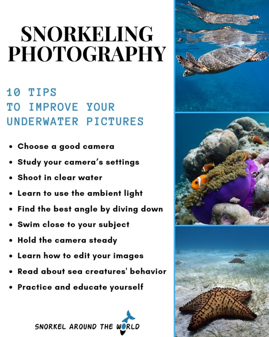 Snorkeling photography 10 tips