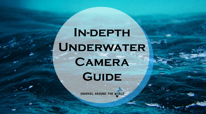 Best underwater cameras for snorkeling and diving