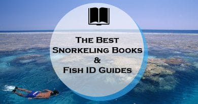 Snorkeling books and reef fish identification guides
