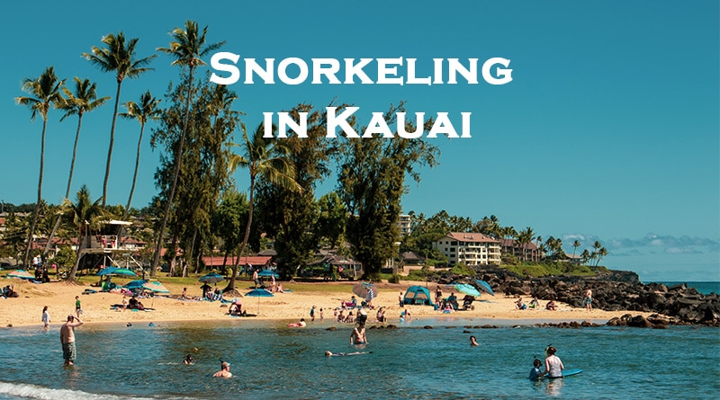 Best snorkel spots in Kauai - Hawaii