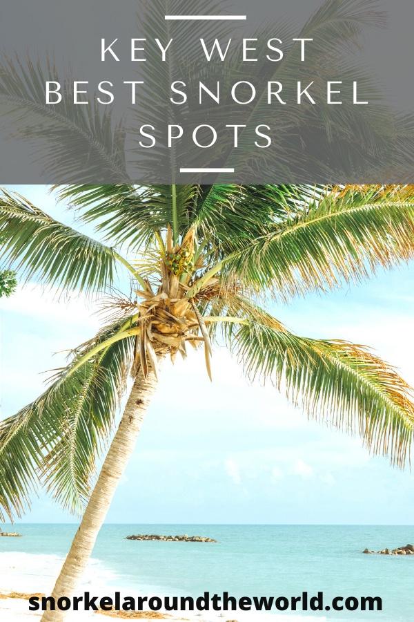 Snorkeling spots Key-West