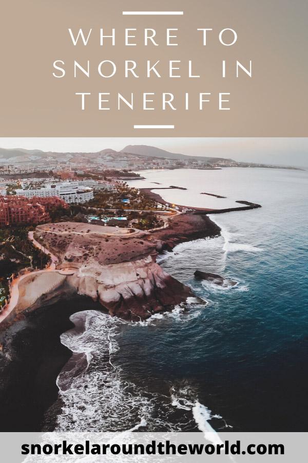 Tenerife snorkel spots guide