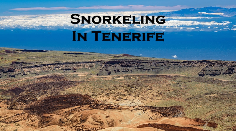 Tenerife snorkeling