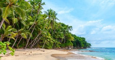 Best places to snorkel in the Caribbean