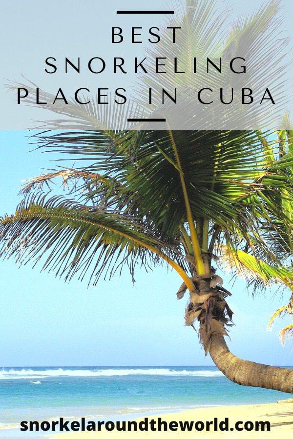 Best snorkeling places in Cuba pin