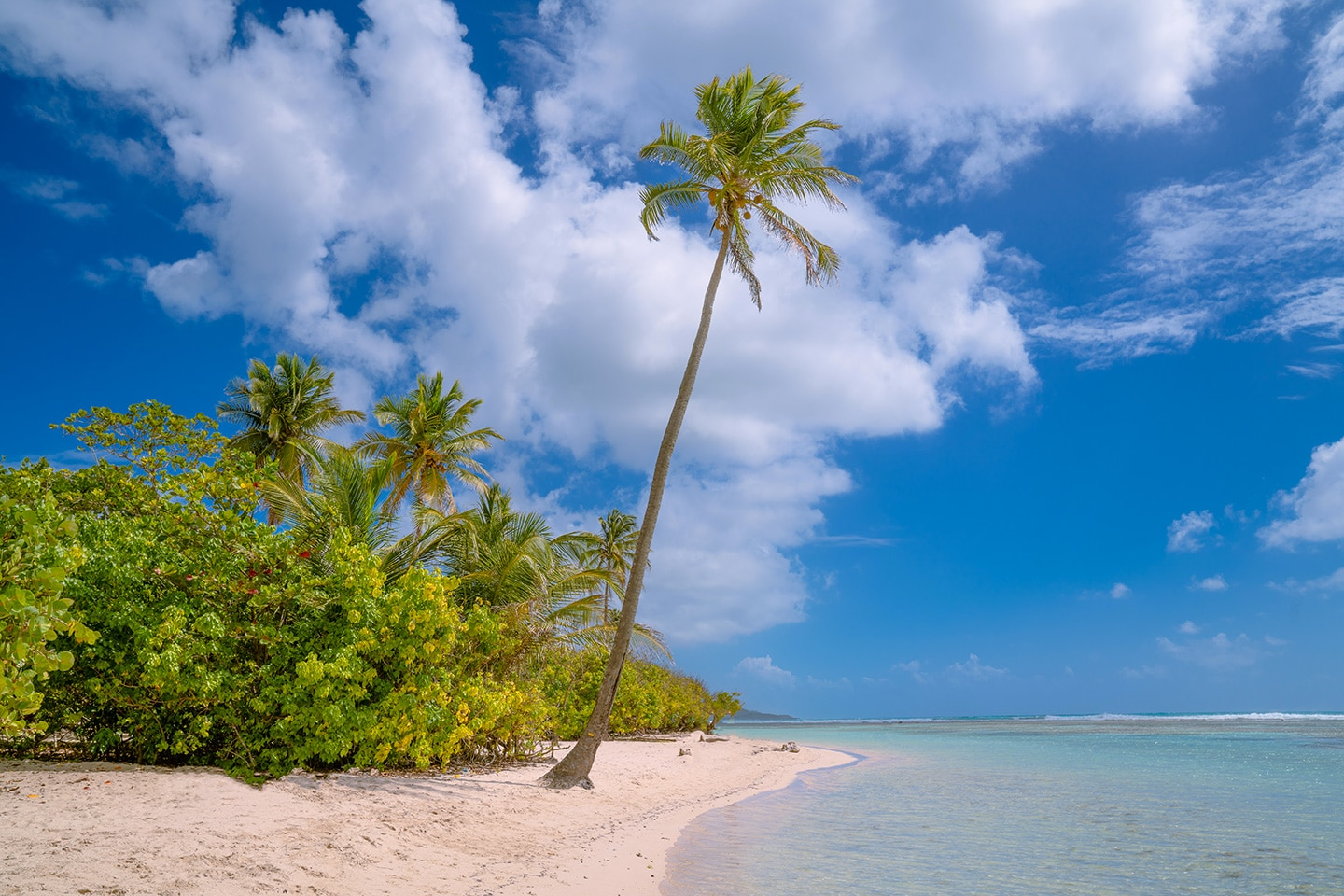 St Anne beach - Guadeloupe