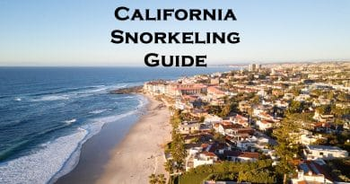 California snorkeling guide