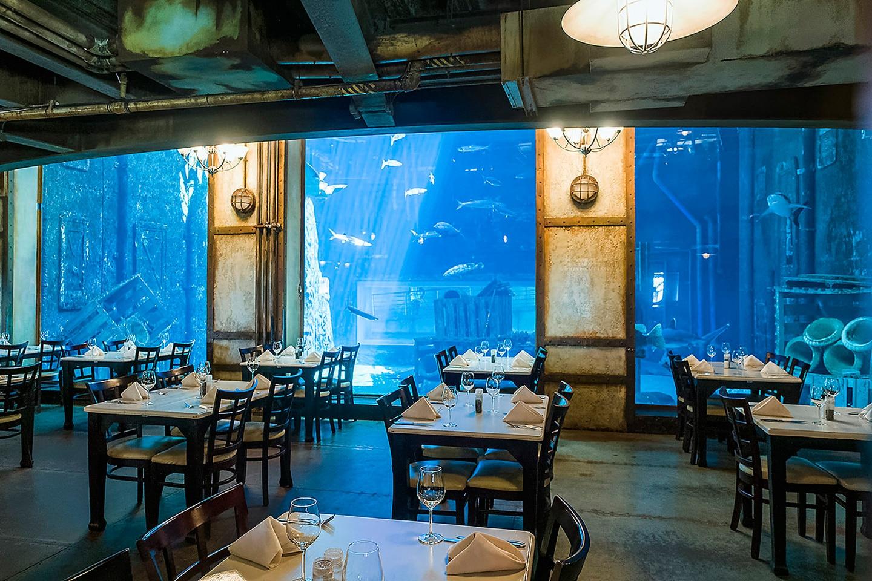 Cargo Hold Underwater Restaurant South Africa
