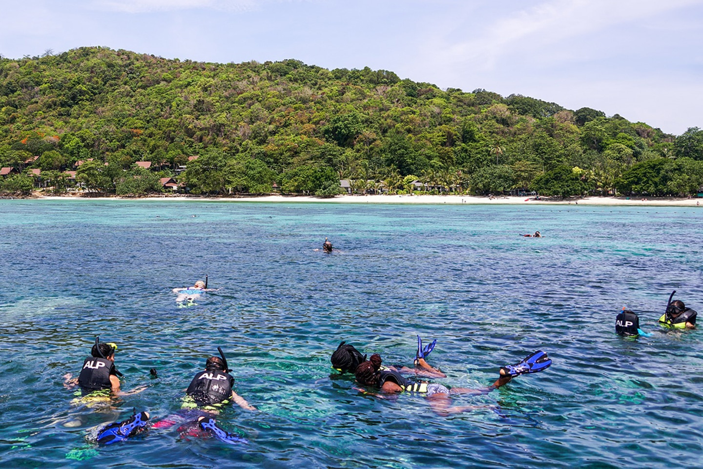Group of snorkelers in the water