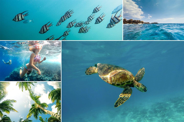 Hero7 underwater images