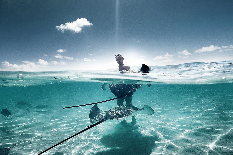 Stingray and boy half underwater photo