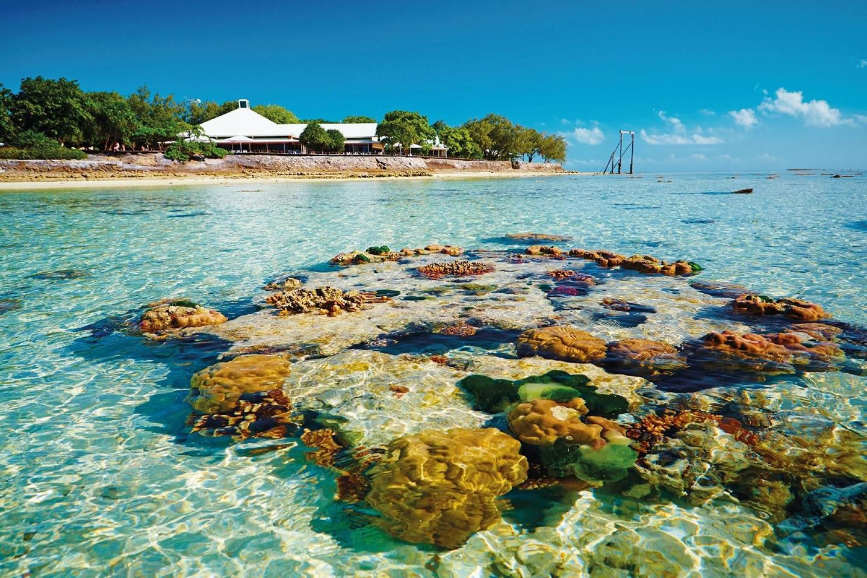 Heron Island Resort