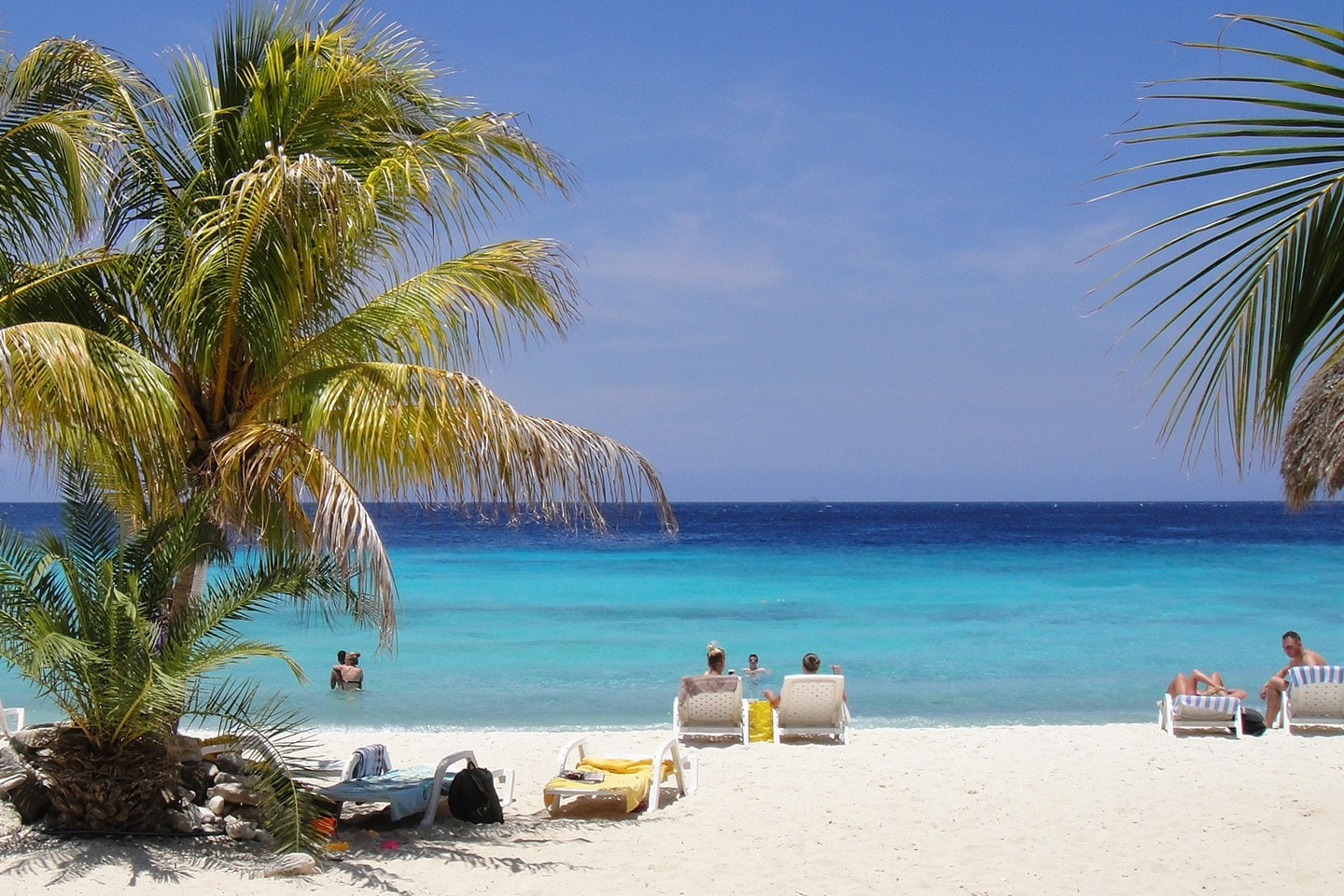 Palm trees and white sand in Curacao