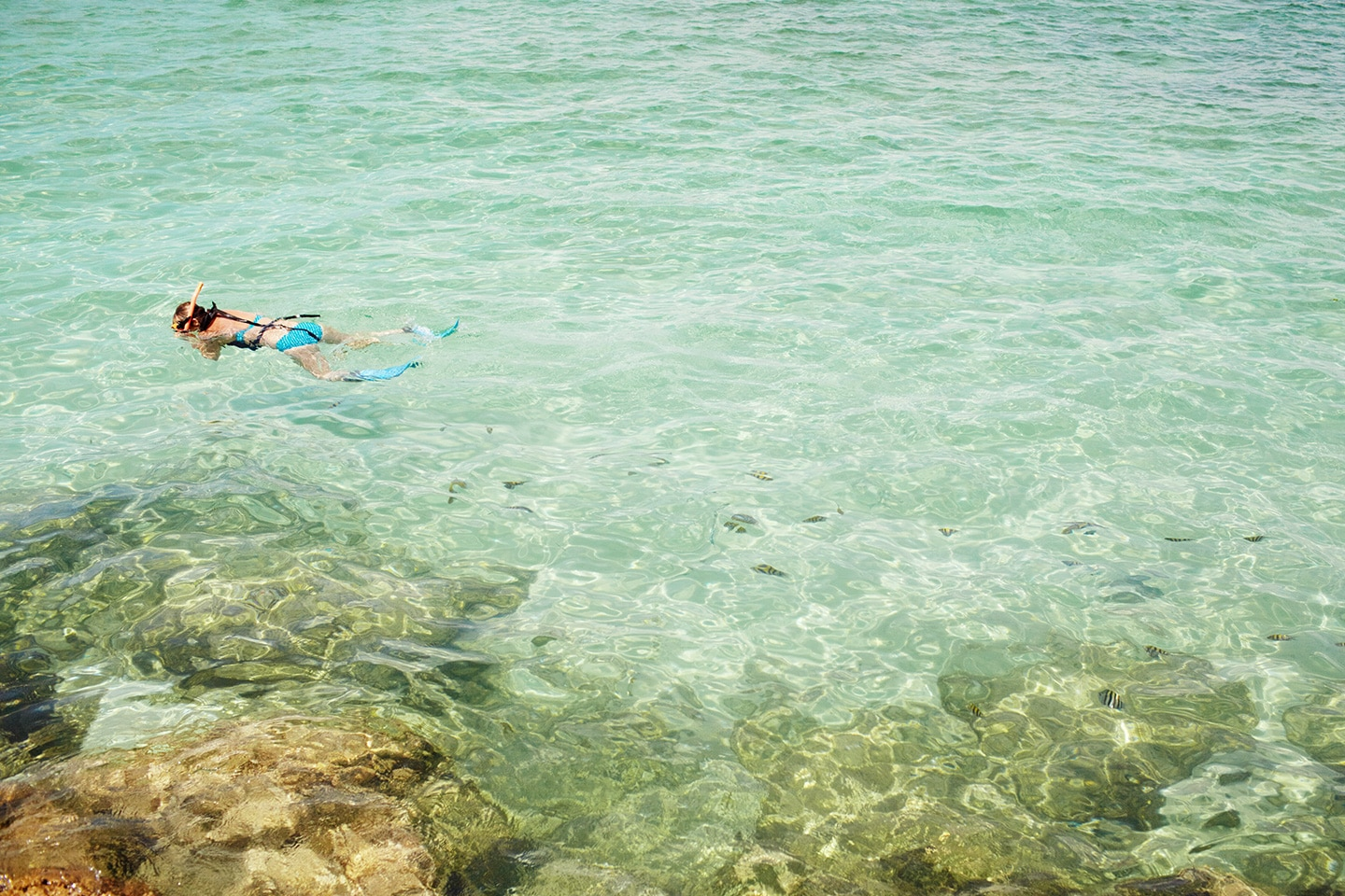 girl is snorkeling in the sea