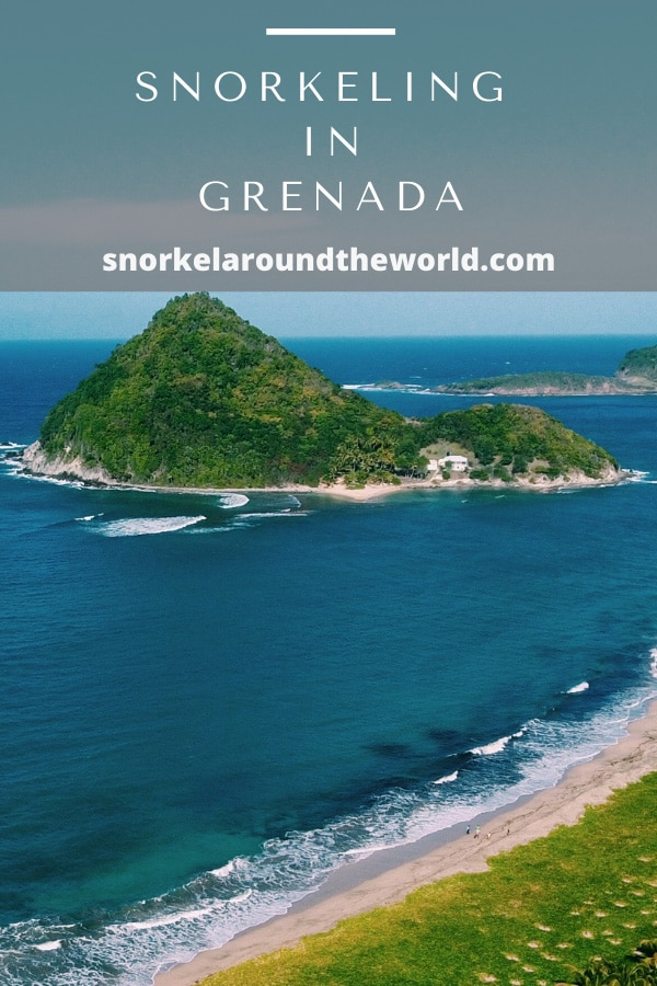 Grenada snorkeling guide pin