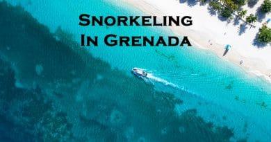 Snorkeling in Grenada