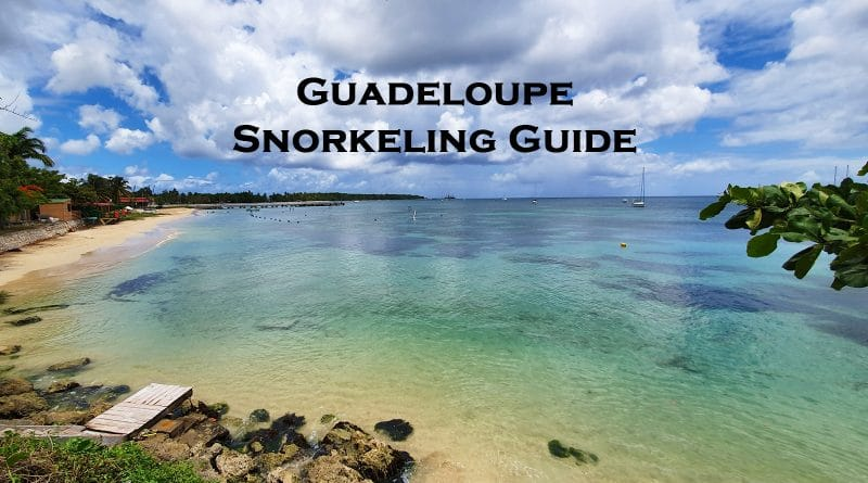 Snorkeling in Guadeloupe