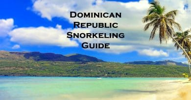 Snorkeling in the Dominican Republic