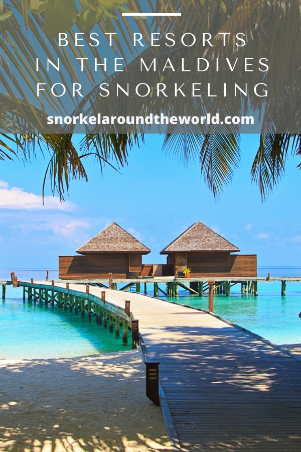 best resorts in maldives for snorkeling