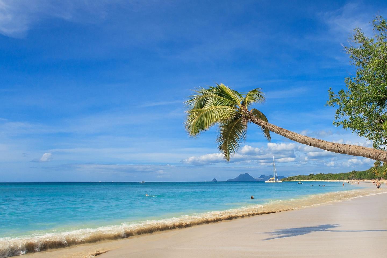 Martinique sandy beach