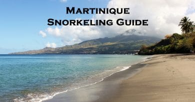 Martinique snorkeling guide