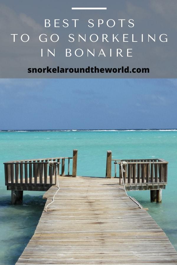 Best Bonaire snorkeling places pin