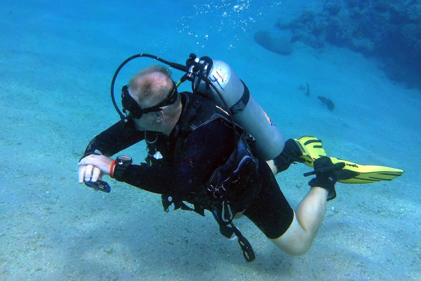 diver with yellow fins