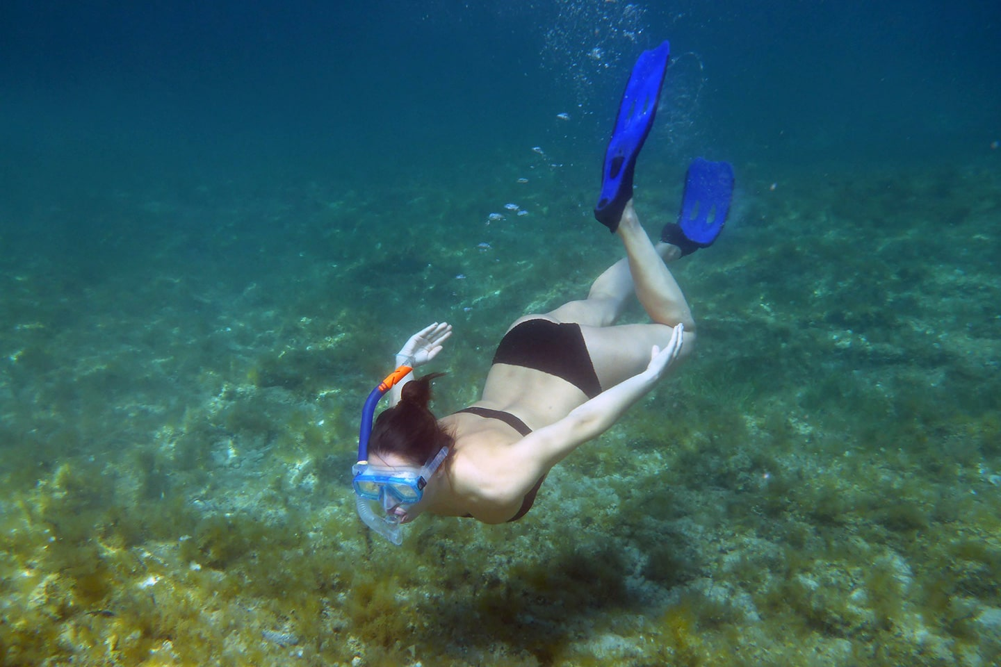 girl with blue fins underwater