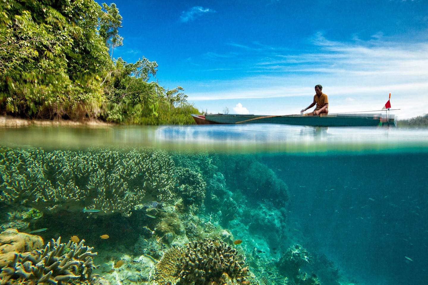 Local man on the reef - Indonesia