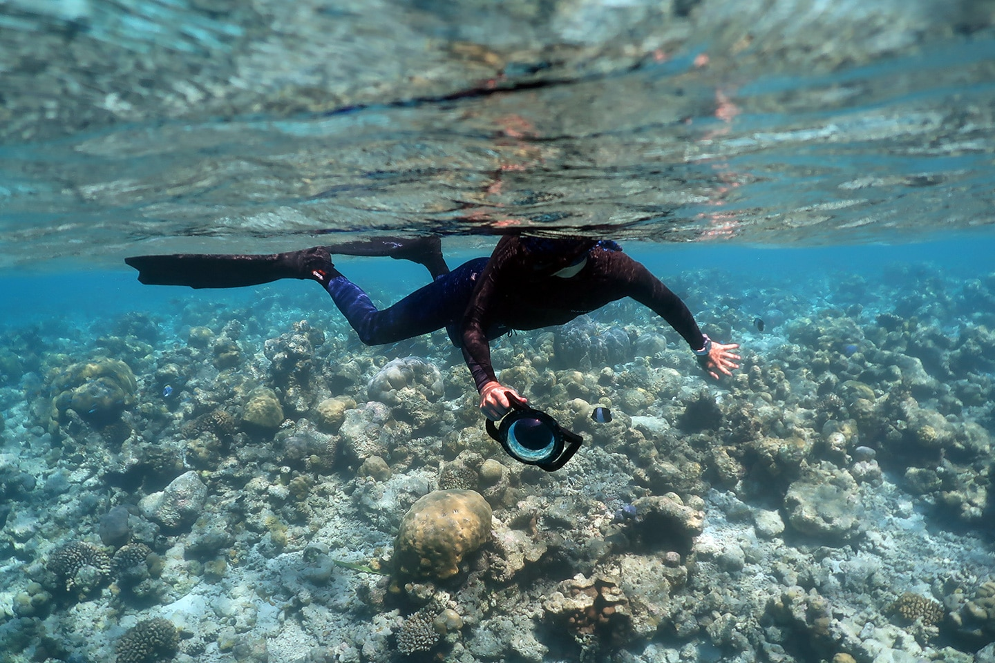 snorkeler with gopro dome port