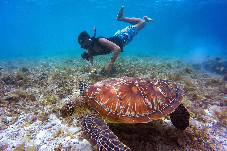 snorkeler with transparent selfie stick