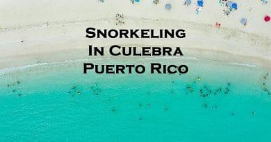 Snorkeling in Culebra Puerto Rico