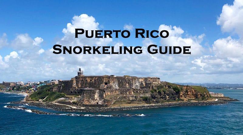Snorkeling in Puerto Rico