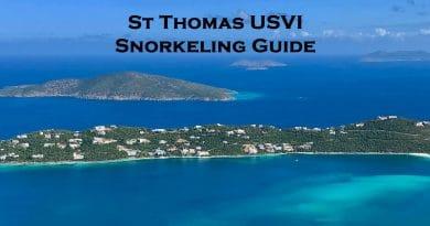 Snorkeling in St Thomas US Virgin Islands guide