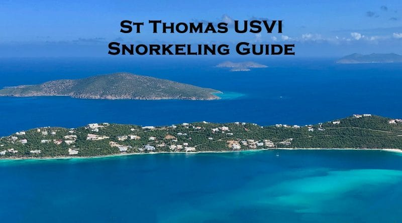 Snorkeling in St Thomas US Virgin Islands guide