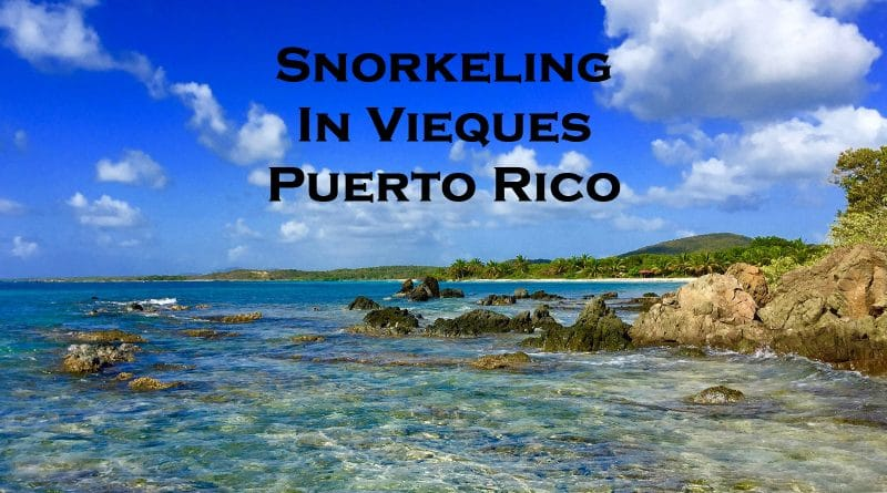 Snorkeling in Vieques Puerto Rico