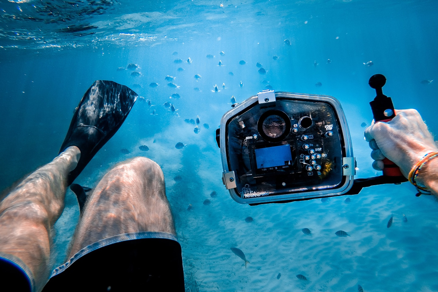swimming with underwater camera