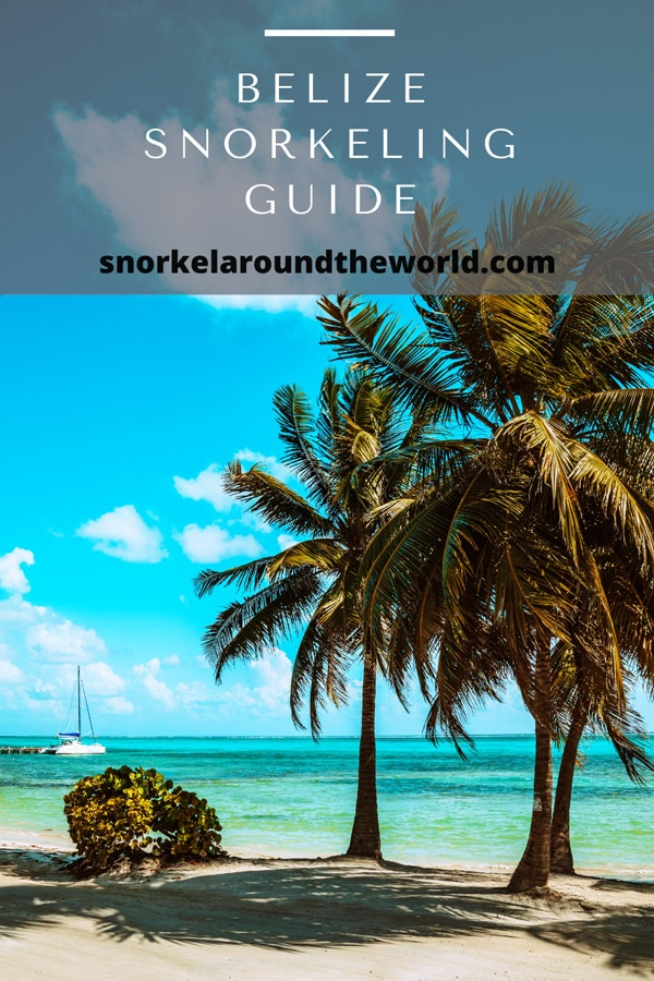 Belize snorkeling guide