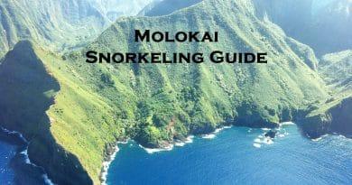 Snorkeling in Molokai