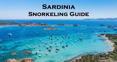 Snorkeling in Sardinia