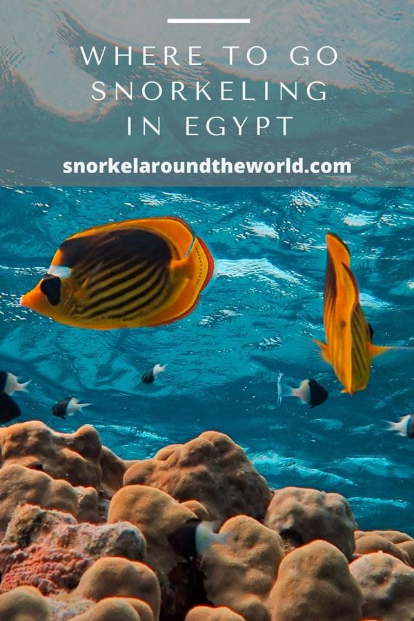 egypt snorkeling places