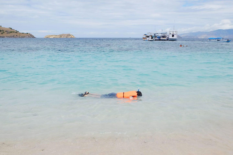 Snorkeler wearing an orange life vest