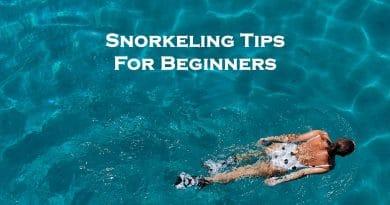Snorkeling for beginners