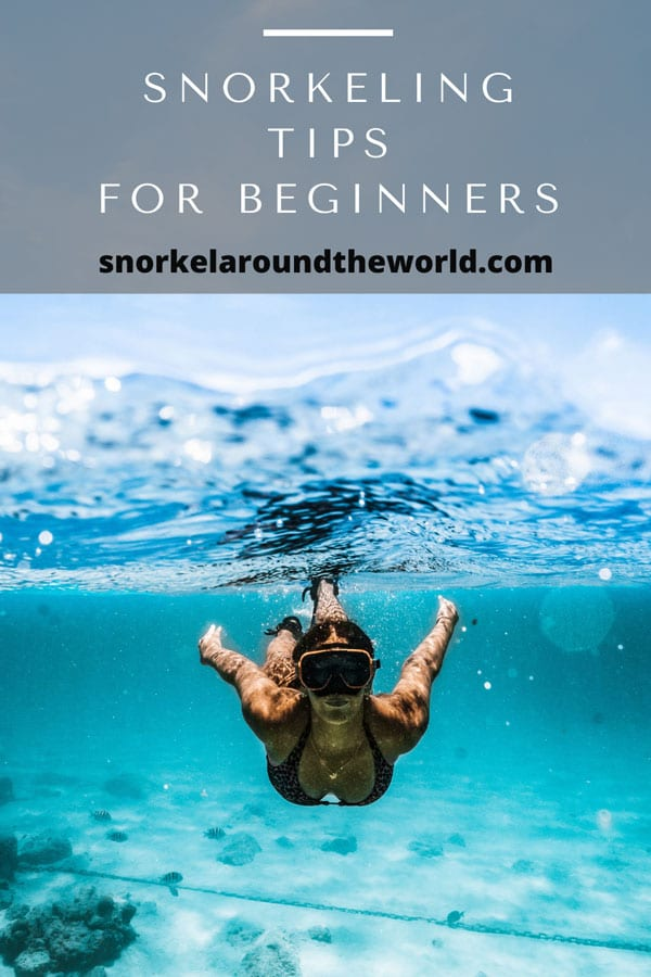 Snorkeling tips for beginners pin