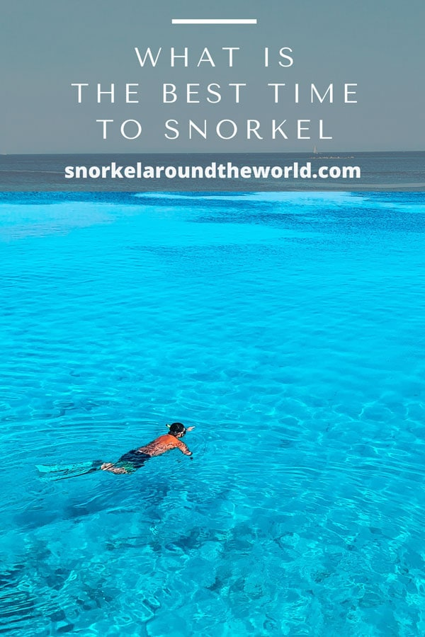 Best time to snorkel pin
