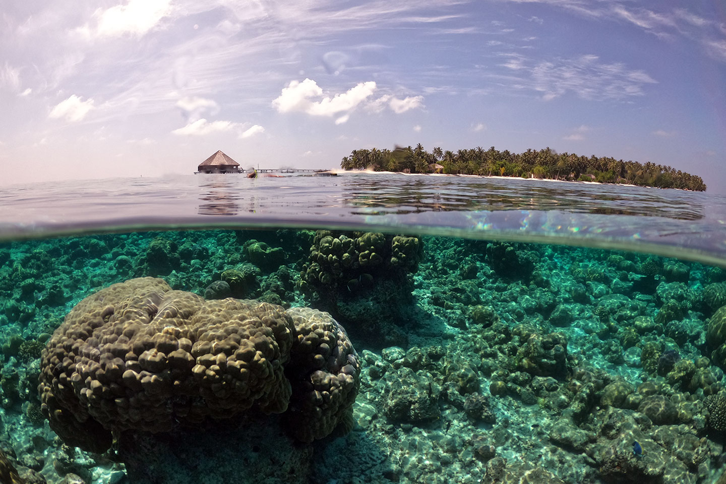 Snorkeling conditions on the reef when the sun is high